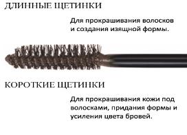 shchetka